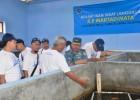 Kolam Budidaya Sidat Lanal Cilacap Mendapat Kunjungan Istimewa