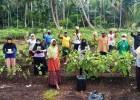 Petani Indragiri Hilir Dapat Tambahan Rp 15 Juta dari Tanam Jahe Merah