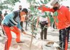 ITDC Menaman 1.000 Pohon di Zona Barat The Mandalika